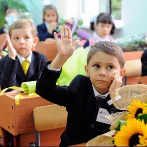 Школы Александровского